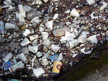 styrofoamlitter - Styrofoam vs. Paper Cups: Which is More Eco-Friendly? - Health and Food